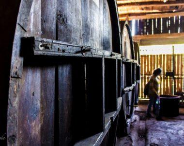visita a la chicheria 2 Maipo Valley Wine Tours