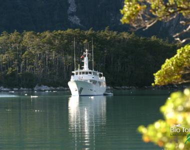 BT Boat 2